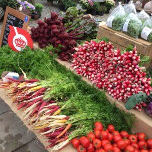 Økologiske grøntsagsfrø